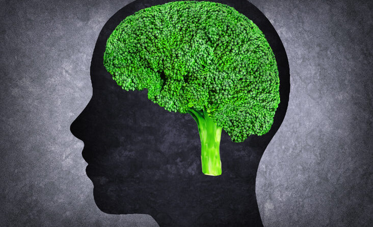 5 Natural Ways to Enhance Your Cognitive Abilities