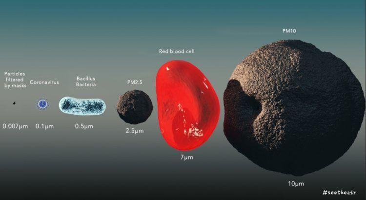 Size of coronavirus particle
