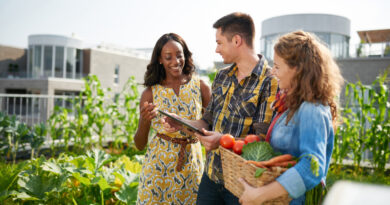 3 Awesome Ways A Workplace Vegetable Garden Can Improve Your Business